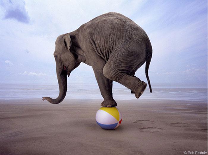 gop_balancing_act23.jpg